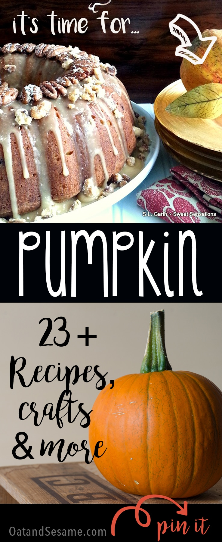23 + Awesome Pumpkin Recipes, Crafts & More! Celebrate #Fall | Recipe at OatandSesame.com